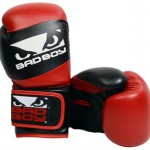 bad boy youth gloves
